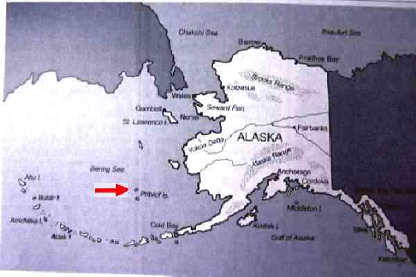 Fox Island Alaska Map.St Paul Island Alaska Gallery